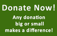 Donate Now! Any donation big or small makes a difference.